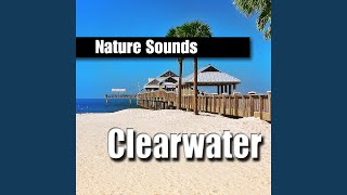 Rolling Ocean Waves of Clearwater, Florida for Deep Relaxation
