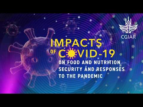 Impacts of COVID-19 on Food and Nutrition Security and Responses to the Pandemic