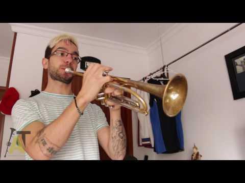 2 Ejercicios Para Mejorar la Precision en la Trompeta