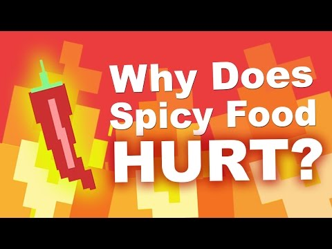 Why Does Spicy Food Burn Your Mouth?