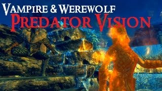 Skyrim Predator Vision, Elite Knight Armor, RealLike ENB