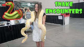 Snake Encounters 🐍 (WK 344.3) | Bratayley