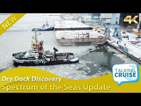 Dry Dock Discovery – Spectrum of the Seas Construction Update #2