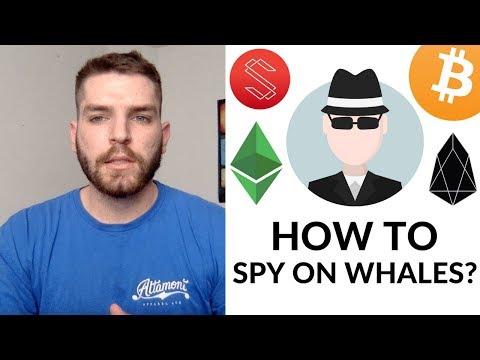 How To Spy On The Richest Crypto Wallets