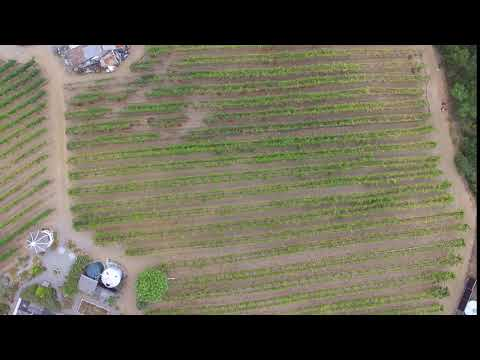 video:Burrell School Drone Video 2