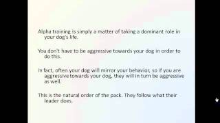 Does Alpha Dog Training Work?