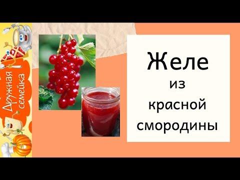 Секреты приготовления желе из красной смородины/Ура, получилось!