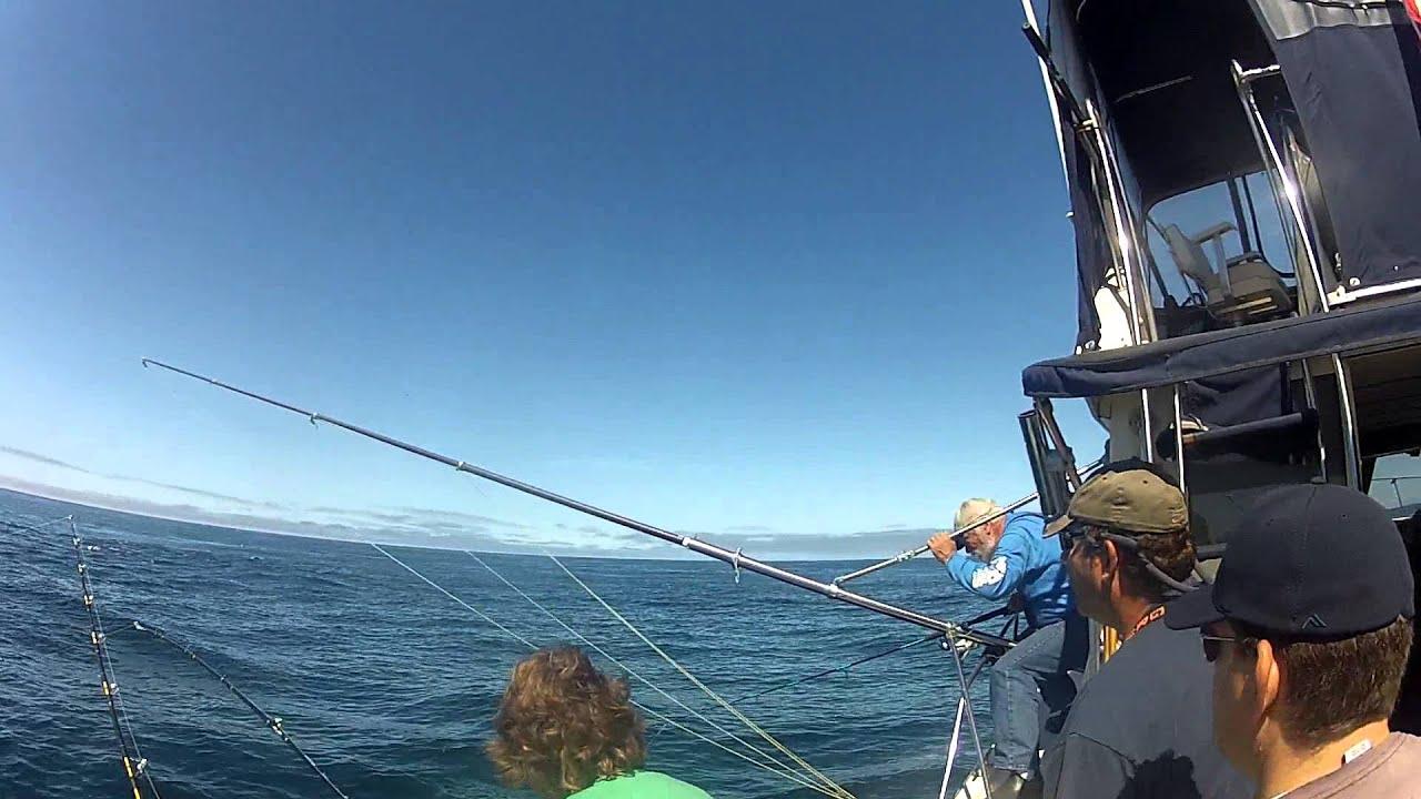Huge tuna boil newport oregon youtube for Oregon tuna fishing report