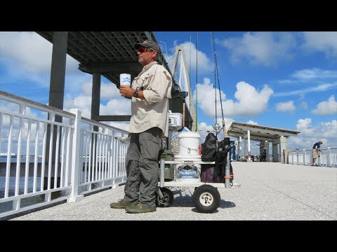 Jiggin' Jerry, Surf And Pier Fishing 2018