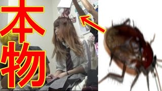女子高生にゴキブリ本物2匹偽物98匹ぶち当てたら大発狂 thumbnail