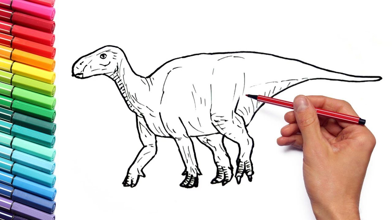 Drawing And Coloring Iguanodon