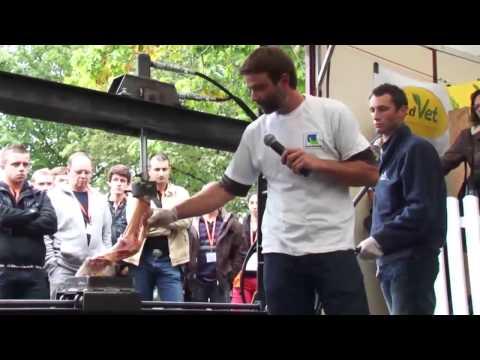 P. Doffémont - équi-meeting maréchalerie 2013 - Appareil de soutien du cheval