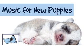 Music For New Puppies! Crate Training And Separation Anxiety Music For Puppies!