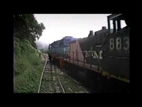Viaje en Tren a Tampico