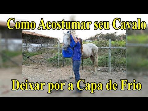 Como Acostumar seu Cavalo com Capa de Frio