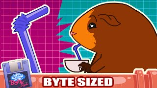 "Argument Erupts in ""Polystyrene Liquid Transport Device"" -  (Guinea Something Good Byte-Sized #22)"
