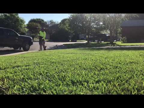 San Antonio Lawn Mowing - 1