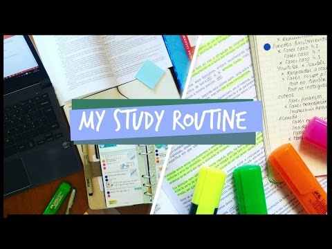 My Study Routine // Study With Me - Updated