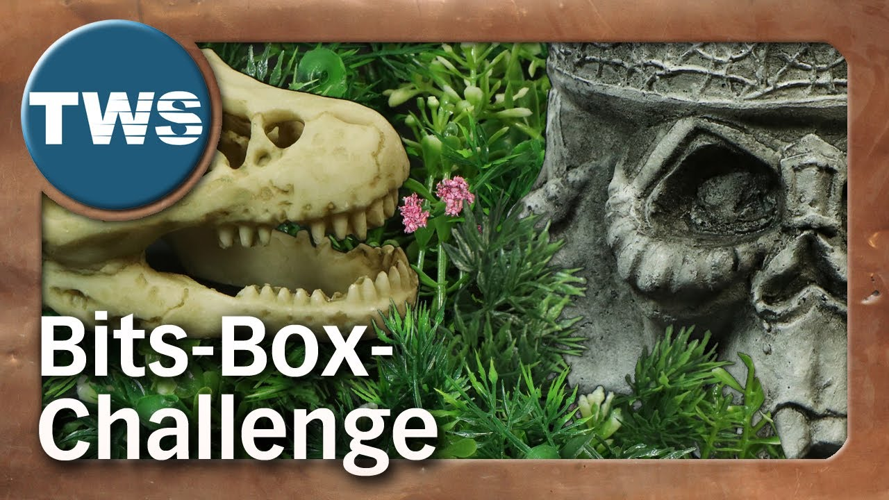 Special: Bits-Box-Challenge Sommer 2020 (Tabletop-Community, Tutorial, TWS)