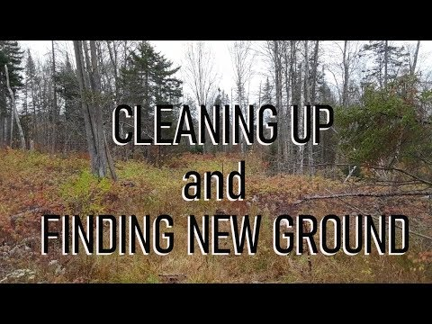 Building a Homestead from Scratch - Episode 2: Cleaning Up and Finding New Ground