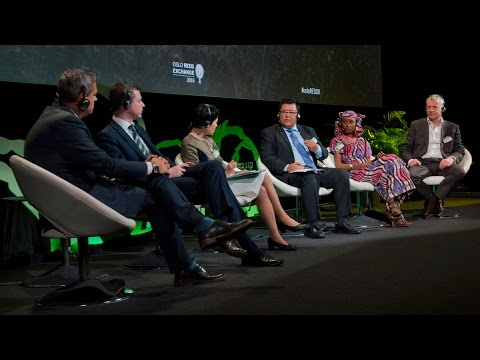 Oslo REDD Exchange 2016: Plenary 2 – REDD+ Post-Paris: International partnerships and alliances
