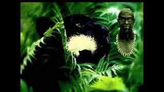 Irmão Jaguar - Tenda Irmãos do Oriente (TIO)