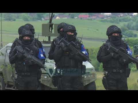 """NATO tregon """"muskujt"""" në Rumani, pjesë edhe policia ushtarake shqiptare - Vizion Plus"""