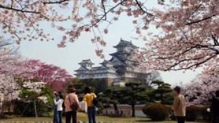 桜の姫路城(Himeji Castle・JAPAN)