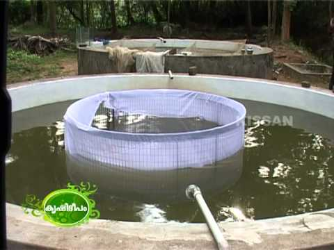 success story  of Aquaculture (both ornamental as well as inland fishes) by young farmer