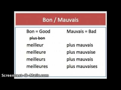 French Comparative with Adjectives