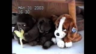 (434) 2003 ГОД!!! МОНТАНА - КУПИЛИ КУЗЮ, БРАТ МУЖА, МОЯ СВЕКРОВЬ, ПОДРУЖКА КАТЯ  Natalya Quick