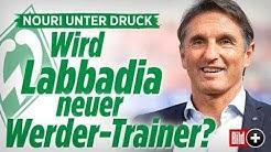 Labbadia neuer Werder-Bremen-Trainer? / Instagram-Update / Sex-Skandal in Hollywood - 17.10.2017