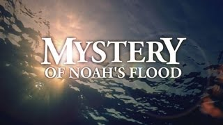 Mystery of Noah