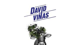 Nuevo libro de David Viñas   La nación y su barbarie