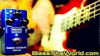 MXR M288 BASS OCTAVE DELUXE DEMO | BassTheWorld.com