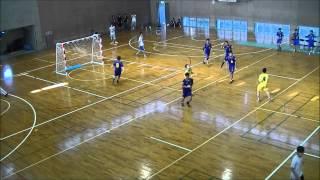 2013一橋大学ハンドボール部新歓PV