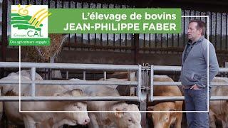 Jean Philippe Faber -  L'élevage de bovins