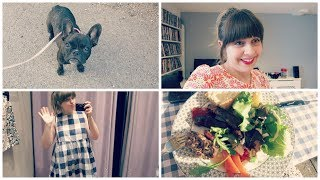 Vlog #5: Party, French Bulldog & Bbq