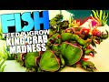 Feed And Grow Fish - BECOMING THE KING CRAB, MASSIVE CRAB ARMY - Fish Feed And Grow Gameplay