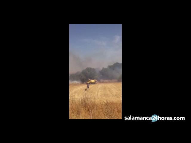 Se reaviva el incendio en Gallegos de Argañán