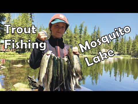 Trout Fishing In The Sierra: Mosquito Lakes