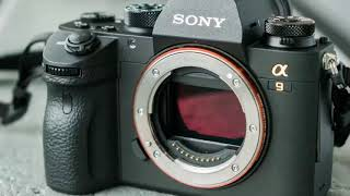 Canon and Nikon finally take actions about Sony