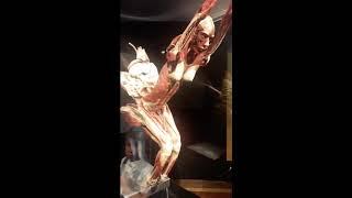 Оригінальна виставка Ґунтера фон Гаґенса «Всесвіт тіла» - Body Worlds