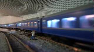 "HOゲージ ""Blue Train"" of Japan"