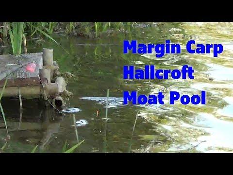 Hallcroft Moat Pool