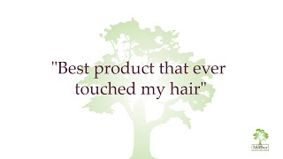 Best Natural Hair Product That Repairs Dry Damaged Hair - Hair Moringa