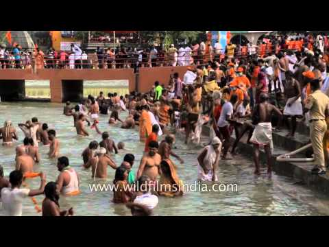 Indian holy men bathe amongst fellow pilgrims in Nasik Kumbh