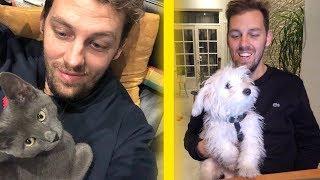 24h avec un chat VS 24h avec un chien