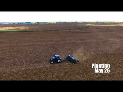 Amazing Drone TIMELAPSE! - Farming From Above