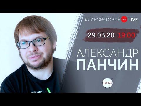 Про вирусы, летучих мышей и конспирологов. Александр Панчин. #ЛабораторияLive